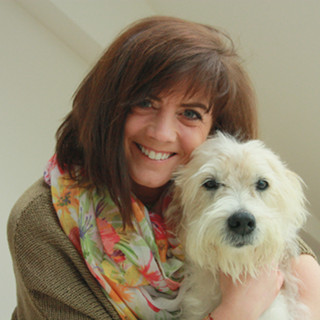 Tierarztpraxis für Verhaltenstherapie